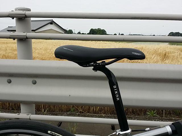 タイオガのサドル、フォルティスを真横から見たクロスバイク