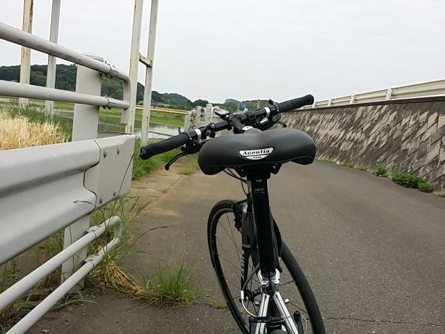 タイオガのサドル、フォルティスを後ろから見たクロスバイク