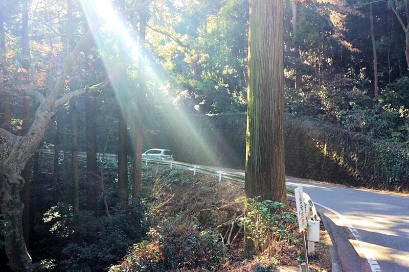 栃木市 太平山を自転車で登る