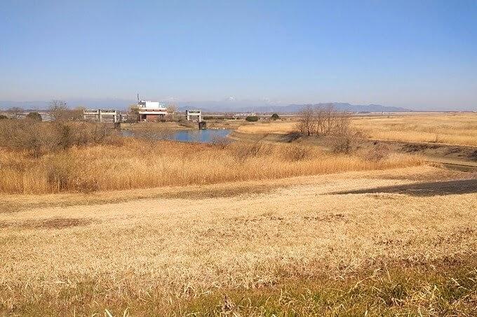 渡良瀬遊水地、3月の水門あたりの様子