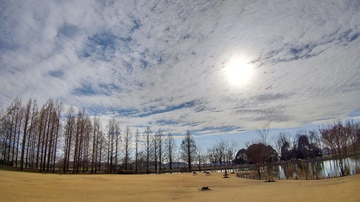 AQUOS sense3の広角カメラで風景を撮影